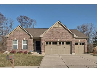 Wentzville Single Family Home For Sale: 239 Carlton Point Drive