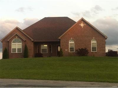 Perry County Single Family Home For Sale: 729 Tyler Branch