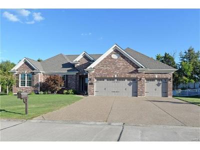 Single Family Home Contingent No Kickout: 252 Mason Glen Drive