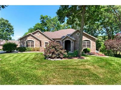 Maryville Single Family Home For Sale: 13 Stonebridge Crossing Drive
