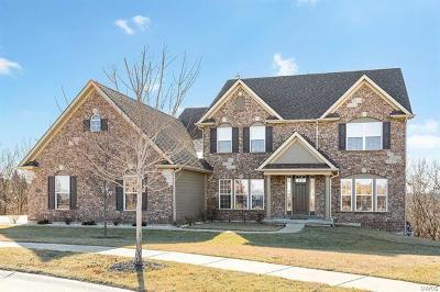 St Louis County Single Family Home For Sale: 1214 Shadow Bend Drive