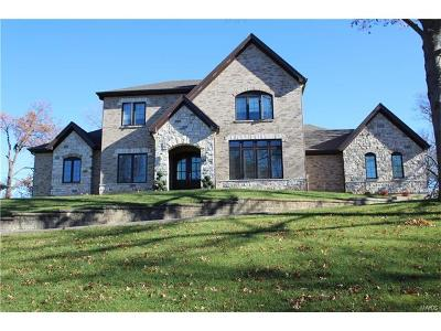 Creve Coeur Single Family Home For Sale: 559 Graeser Road