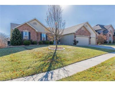 Wentzville Single Family Home For Sale: 210 Andrea Lynne Drive