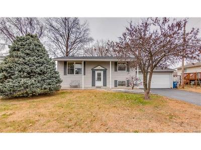 Single Family Home For Sale: 11927 Glen West Drive