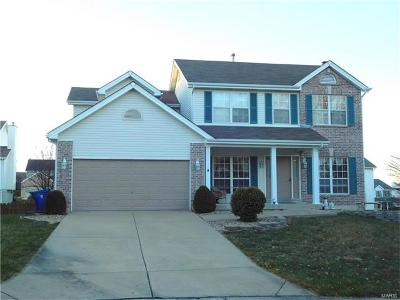 ST CHARLES Single Family Home For Sale: 311 Copper Crest Court