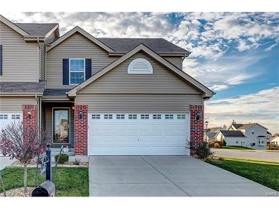 Fairview Heights Single Family Home For Sale: 803 Foxgrove Drive
