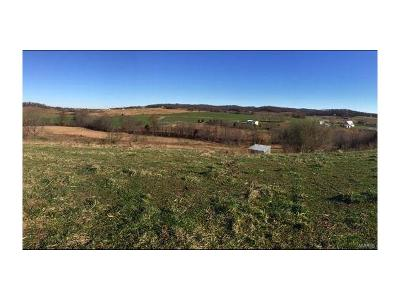 Scott County, Cape Girardeau County, Bollinger County, Perry County Farm For Sale: 335 Spring Valley Lane