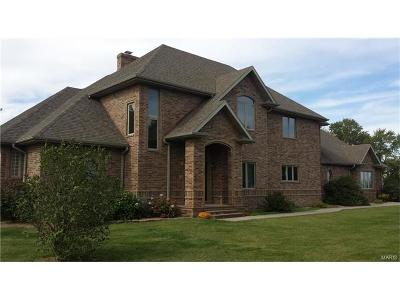 Perry Single Family Home For Sale: 13629 Monroe Road 689