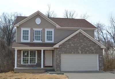 Florissant Single Family Home For Sale: 5422 Misty Crossing (Lot 14) Court