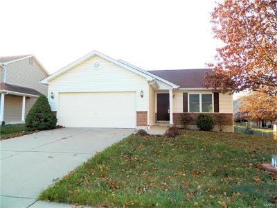 Wentzville Single Family Home For Sale: 539 Briar Meadows Court