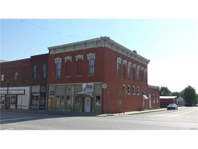 Marion County, Monroe County, Ralls County, Shelby County, Knox County, Lewis County Commercial For Sale: 202 N. Main St