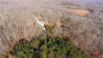Scott County, Cape Girardeau County, Bollinger County, Perry County Farm For Sale: 3 North Hwy 51