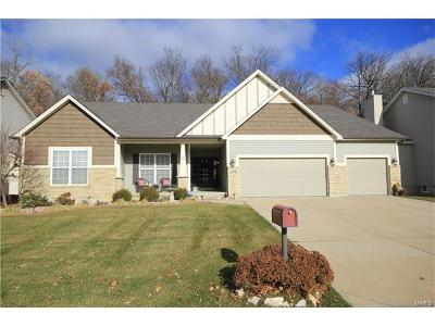 O'Fallon Single Family Home For Sale: 1538 Hunters Meadow