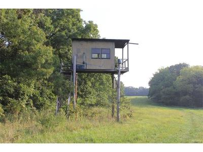 Jonesburg Farm For Sale: Tower Road