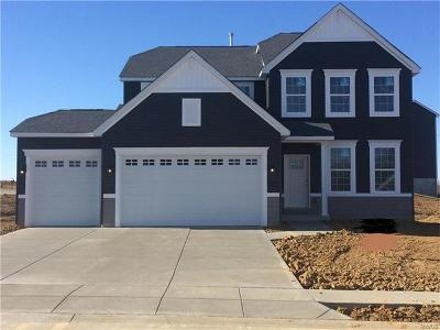 St Charles County Single Family Home For Sale: 1035 Sweet River Drive