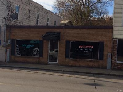 Scott County, Cape Girardeau County, Bollinger County, Perry County Commercial For Sale: 109 & 111 First Street