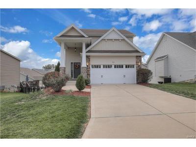 O'Fallon Single Family Home For Sale: 203 Sunset Villa Circle
