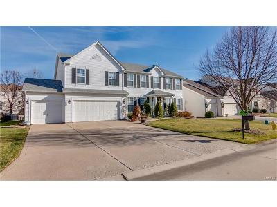 O'Fallon Single Family Home For Sale: 408 Copper Tree Trail