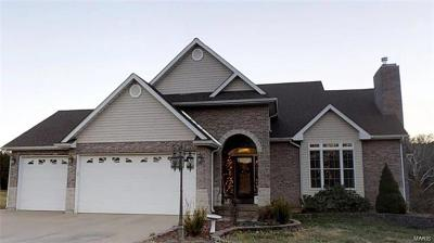 Bonne Terre Single Family Home For Sale: 1590 Cedar Valley Drive