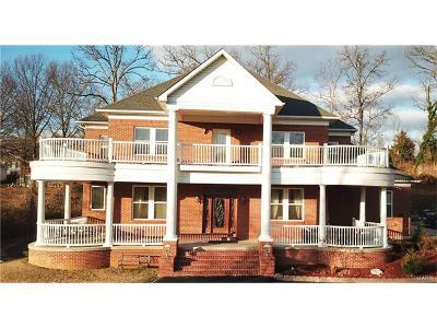 St Louis Single Family Home For Sale: 5467 Ringer Road