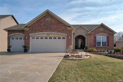 Wentzville Single Family Home For Sale: 318 Dalton Court