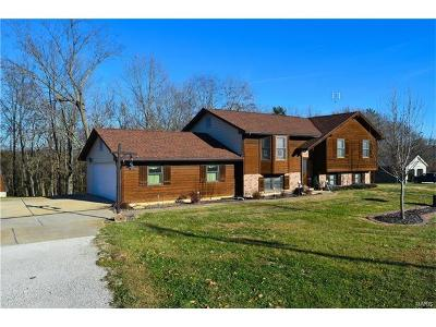 Warren County Single Family Home For Sale: 15435 Duden Hills