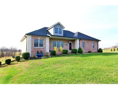 Scott County, Cape Girardeau County, Bollinger County, Perry County Single Family Home For Sale: 320 Tumbleweed Pass