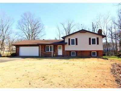 Scott County, Cape Girardeau County, Bollinger County, Perry County Single Family Home For Sale: 1228 Ashbury Court