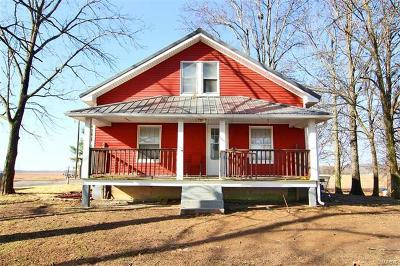 Scott County, Cape Girardeau County, Bollinger County, Perry County Single Family Home For Sale: 408 South County Road 257