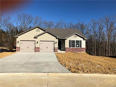 Warren County Single Family Home For Sale: 503 Indian Lake Drive