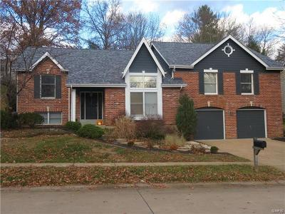 Chesterfield Single Family Home For Sale: 14367 White Birch Valley Lane