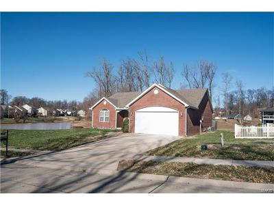 Scott County, Cape Girardeau County, Bollinger County, Perry County Single Family Home For Sale: 2640 Cobblestone Court