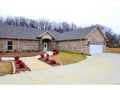 Scott County, Cape Girardeau County, Bollinger County, Perry County Condo/Townhouse For Sale: 2921 Shadow Wood