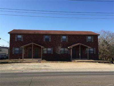 Desloge, Park Hills Multi Family Home For Sale