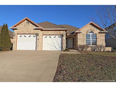 Scott County, Cape Girardeau County, Bollinger County, Perry County Single Family Home For Sale: 620 Silverado Trail