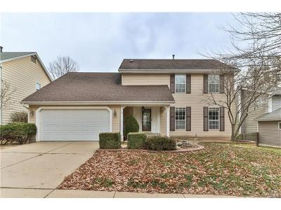 Manchester Single Family Home For Sale: 812 Pebblefield Terr