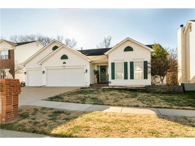 St Louis County Single Family Home For Sale: 3091 Crystal Lake Drive