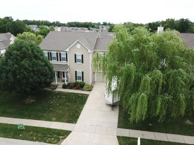 Wentzville Single Family Home For Sale: 202 Reliance