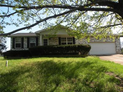 Bonne Terre MO Single Family Home For Sale: $99,900