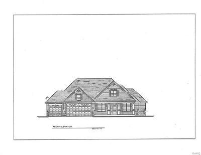 Augusta, Defiance, New Melle New Construction For Sale: 4472 Tbb, Augusta Shores - Killdeer