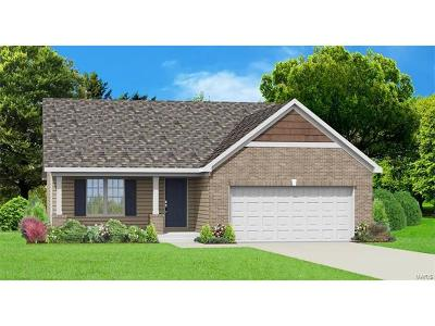Wentzville Single Family Home For Sale: 552 Crystal Stream Drive