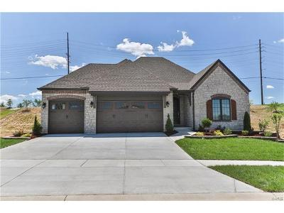 Chesterfield Single Family Home For Sale: 14742 Schoettler Grove Court
