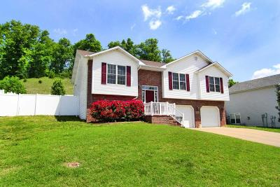 Cape Girardeau County Single Family Home For Sale: 3952 Scenic Drive