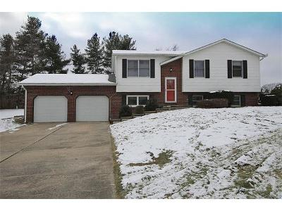 Godfrey IL Single Family Home For Sale: $144,900