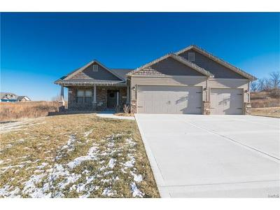 Caseyville Single Family Home For Sale: 7986 Matterhorn Canyon Road