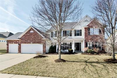 Wentzville Single Family Home For Sale: 3107 Bear View Court