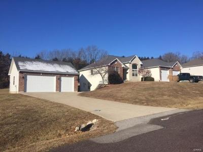 Franklin County Single Family Home For Sale: 607 Rock Creek