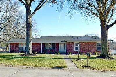 Single Family Home Coming Soon: 98 High Valley Drive