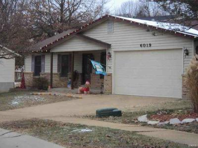 Single Family Home For Sale: 6019 Bayou Bend Court