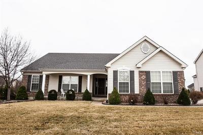 Dardenne Prairie Single Family Home For Sale: 2006 Avalon Mist Circle